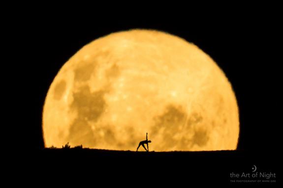 yogaByTheHoneyMoon.jpg